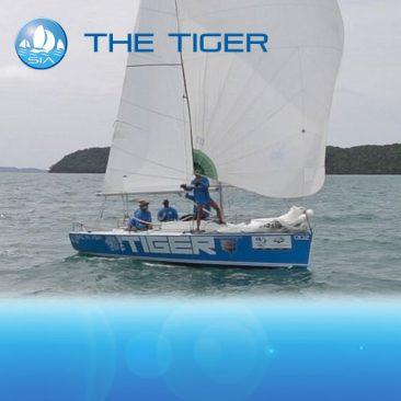 Tiger racing charter